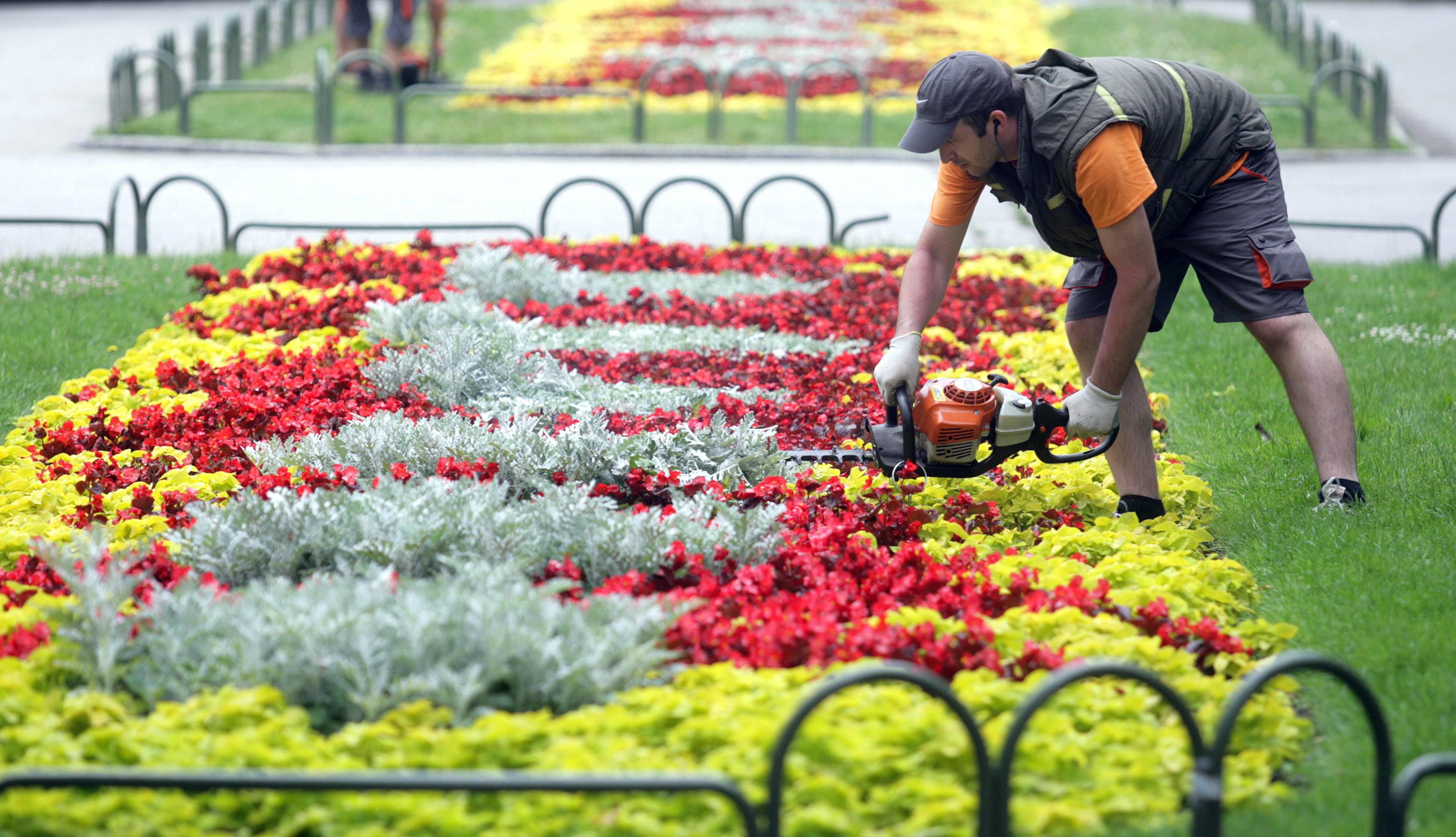 """Красивите и поддържани цветя създават свежо и пролетно усещане в парка пред Народния театър """"Иван Вазов"""""""
