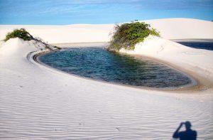 Тези прекрасни сини очи проглеждат всяка година, след като дъждовете от януари до юни запълват долините между дюните
