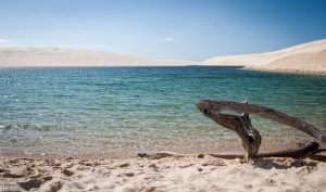 Красотата на белите дюни