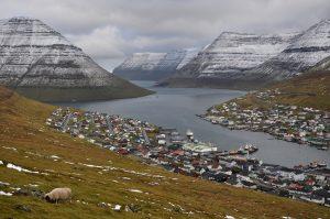 Фарьорските острови – където броенето на овце преди сън е реално приспивателно