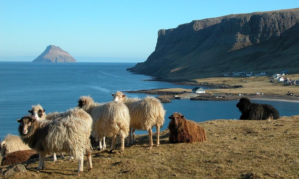 Фарьорските острови