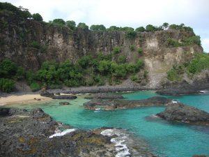 Във водите на Фернандо де Нороня плуват цветни риби, делфини, омари, костенурки, корали, което ги прави предпочитано място за подводно наблюдение и гмуркане.