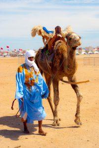 Инвестициите на мароканското правителство=