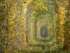 Тунелът няма официална защита